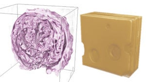 3-D rendering of red cabbage and Swiss cheese